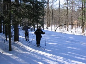 Nordic Skiing at Horseshoe Resort