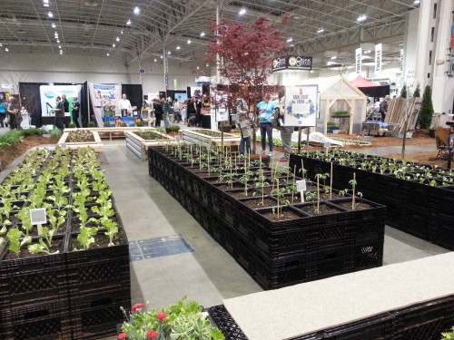 Milkcrate Gardens at Green Living Show