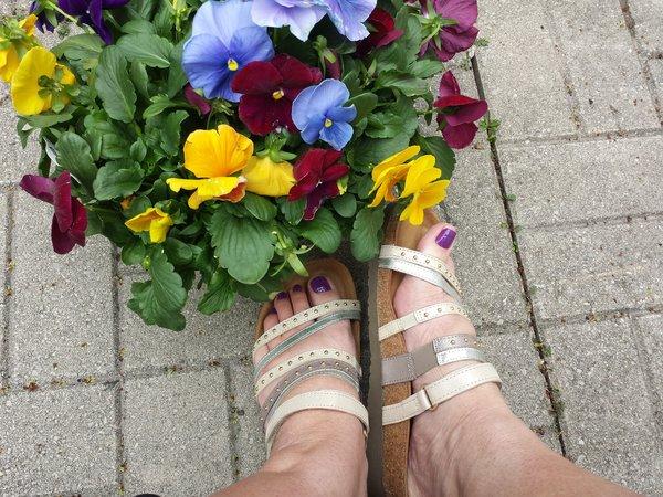 Prescott sandals from Naot
