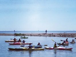 Paddle The Rouge is one of the most popular things to do Father's Day weekend in Toronto, photo courtesy CPAWS Wildlands League