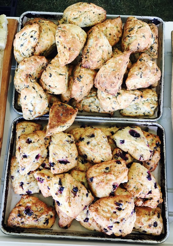 Tori's Bakeshop Scones at The Big Feastival