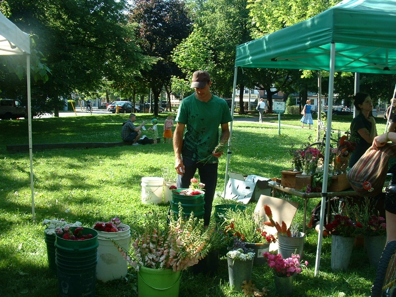 Flowers at Trinity Bellwoods Farmers Market