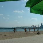 Beach Volleyball, Sunnyside