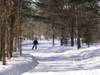 Cross Country Skiing at Horseshoe