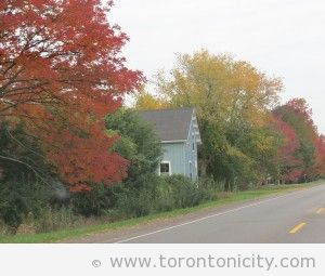 Hwy 12 from Sandbanks Provincial Park