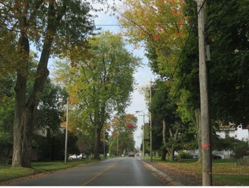 Bloomfield, Prince Edward County
