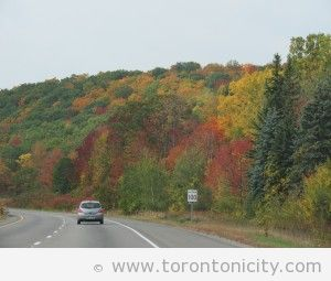 Hwy 401 near Brighton, Ontario
