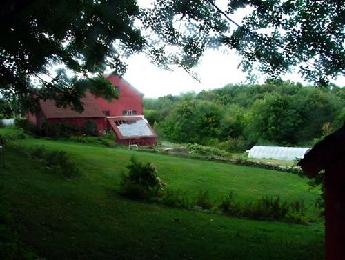 Organic Farm, photo johngullo