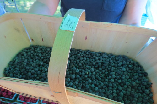 Organic blueberries from Feast of Fields at Withrow Farmers' Market