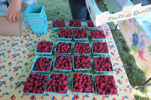 Organic raspberries from Feast of Fields at Withrow Farmers' Market