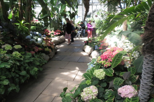 Easter Flower Show at Allan Gardens Conservatory