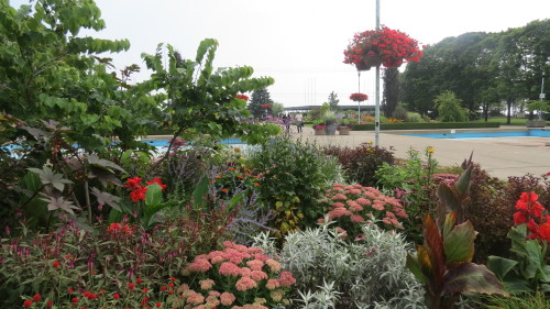 Gardens near the pier at Centre Island