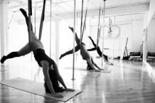 Brass Vixens Pole Dancing Studio