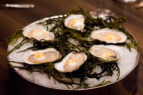 John Bil's Best Oysters at America Restaurant