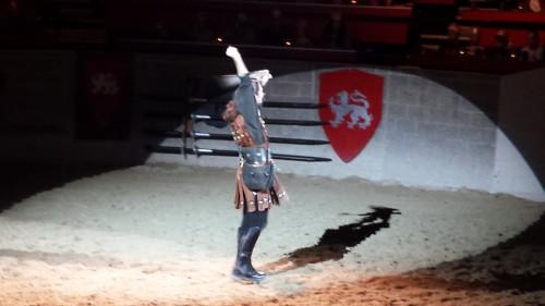 A falconer tames a falcon at Medieval Times