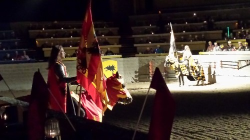 Our Red and Yellow horse at Medieval Times