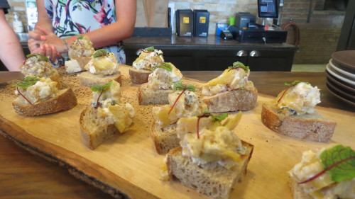 Cheese on home baked breads at Spirit Tree Cidery