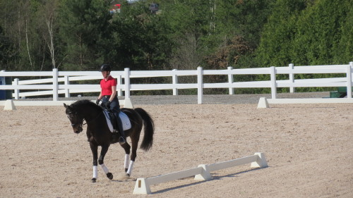 Riding demonstration at Caledon Pan Am Equestrian Park