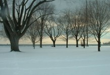 Winter along the Martin Goodman Trail in Toronto