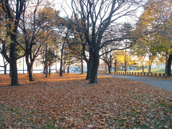 Coronation Park in Toronto