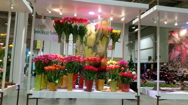 Spring Valley Gardens at Canada Blooms 2016 in Toronto