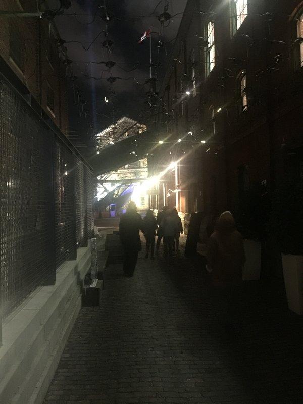 Social Sparkles Studio Toer (Netherlands) at Toronto Light Festival