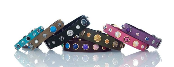 Dog collars from Hollywood Collection starting at $69.99 from Hot Diggity Dog