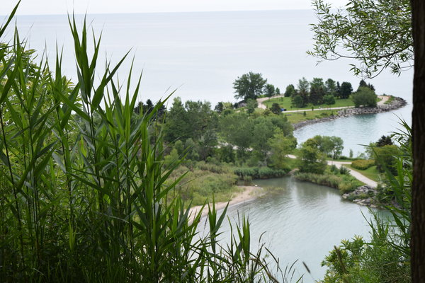View of Bluffers Park from Scarborough Crescent Park in Toronto