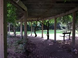 A pergola provides shade from the sun at Rosetta McClain Gardens