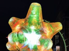 The Zoa by Martin Taylor at Toronto Light Festival