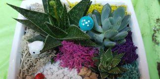 My Plant Nite Cozy Owl White Ceramic Square Dish