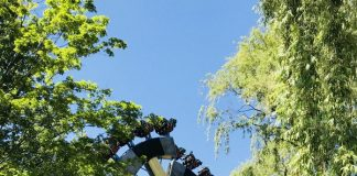 Lumberjack ride at Canada's Wonderland