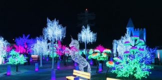 Luminous Garden at Aurora Winter Festival