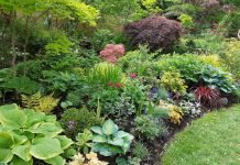Garden at home in the Main Street and Gerrard Street East neighbourhood on Mark's Choice Through The Garden Gate 2019