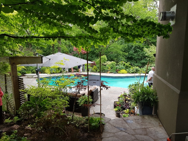 Swimming pool framed by gorgeous gardens at Mark's Choice Through The Garden Gate 2019