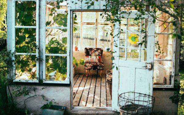Hydroponic systems for indoor gardening, photo arno smit unsplash