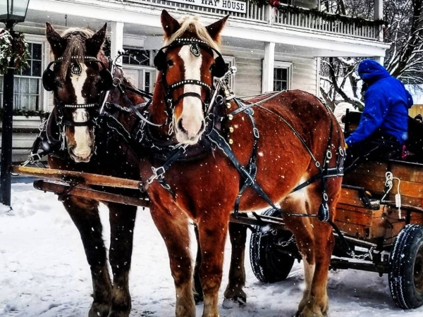 Wagon rides at Black Creek Pioneer Village are one of the popular things to do March Break in Toronto 2020