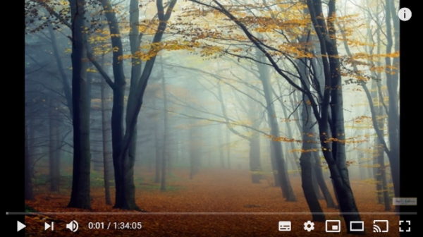 Easy Autumn Forest by Angela Anderson is one of the popular online painting tutorials.