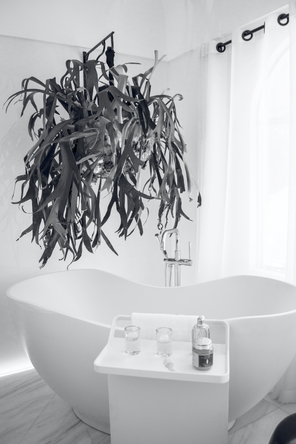 Bathroom design trends for 2021 include Jungle Bathrooms, photo pexels-luis-ruiz-1416244