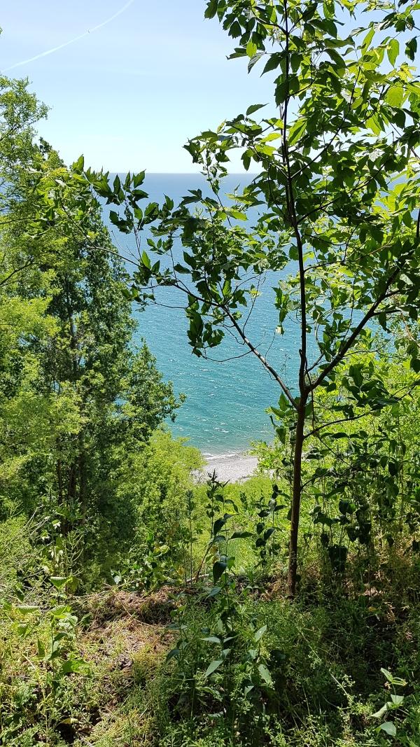 The view of Lake Ontario.